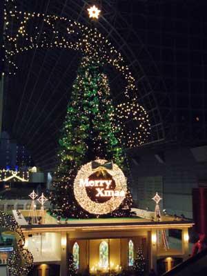 20111223tree_q1